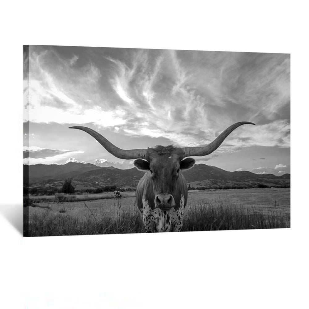 Kreative Arts Black and White Animal Canvas Wall Art Highland Cattle with Long Horns Picture Texas Longhorn in Sunset Farm Painting for Home Decor Modern Living Room Decorations Ready to Hang 24x36in