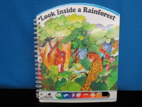 Look Inside a Rainforest