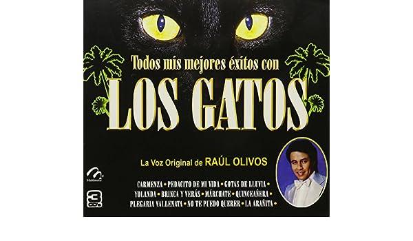 Los Gatos - Los Gatos
