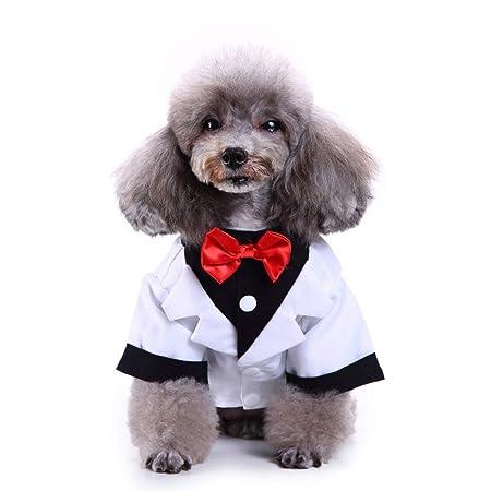 WHZWH Camisa de la Boda para Mascotas, Traje de Corbata de moño ...