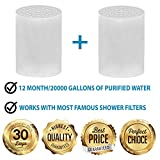 CaptainEco 5-Stage Shower Filter with 2 Replacement Cartridge - High Output Universal to Remove Chlorine & Sediments to Purify Water Chrome Plated finish