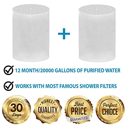 captaineco 5 stage shower filter with 2 replacement cartridge high output universal to remove. Black Bedroom Furniture Sets. Home Design Ideas