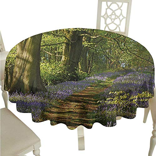Zodel Round Tablecloth Woodland Carpet of Bluebells Spreads Through Woodland in Staffordshire England Washable Tablecloth D36 Suitable for picnics,queuing,Family