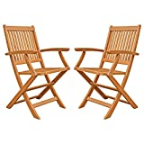 LuuNguyen Win Outdoor Hardwood Folding Arm Chair, Natural Wood Finish, Set of 2