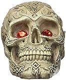 Penn-Plax Skull Grazer Ornament, Large