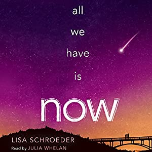 All We Have Is Now Audiobook
