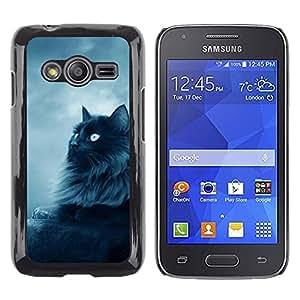 TopCaseStore / la caja del caucho duro de la cubierta de protección de la piel - Black Persian Cat Nebelung Longhair - Samsung Galaxy Ace 4 G313 SM-G313F