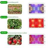 600W LED Grow Light Full Spectrum Plant Growing