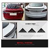 JC SPORTLINE fits Tesla Model S 60D 75D P85 P90D