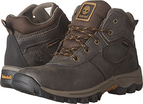 Timberland Youth Mt. Maddsen Mid Waterproof Hiking Boot, Dark Brown -