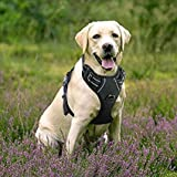 Rabbitgoo Front Range Dog Harness Adjustable Outdoor Pet Vest with Handle Easy Control for Small Medium Large Dogs & Durable Material