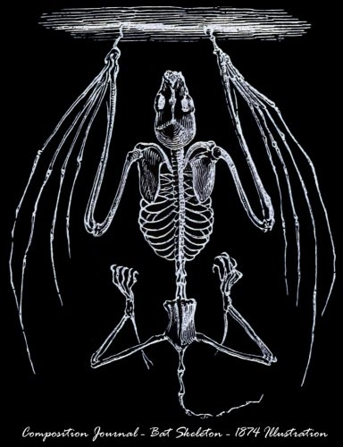 Composition Journal - Bat Skeleton - 1874 Illustration: 7.44
