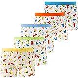 Cotton Underwear Boys Toddler Boxer Briefs Underwear Mix Color Pack of 5 (2Y - 8Y) (AL001-L)
