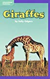 img - for Giraffes - Grade 2 Macmillan McGraw-Hill Leveled Reader - Guided Reading Level: K, Benchmark 20, Lexile 560 book / textbook / text book