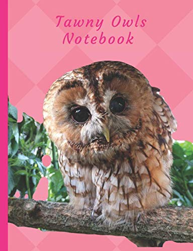 - Tawny Owls Notebook: Journal 150 Ruled Line Pages (Bird Lovers Journal)