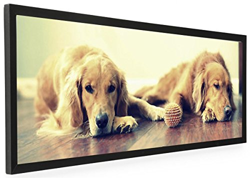 - Displays2go 40 x 13.5 Panoramic Photo Frame for Wall Mount Use, 1-inch Profile, Aluminum (Black)