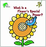 What Is a Flower's Special Power?, Kay Massey, 1607546957
