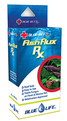 Fish Fungus Mouth - Blue Vet Fish Flux 2000 mg