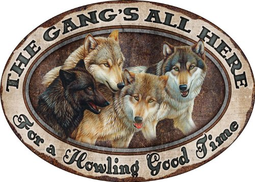 Gang Control (River's Edge The Gang's All Here For A Howling Good Time Embossed Tin Sign, X-Large/12x17-Inch)