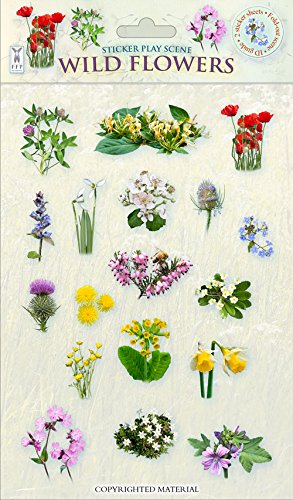Sticker Play Scene: Wild Flowers (Sticker Play - Stickers Wildflowers
