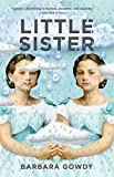 img - for Little Sister: A Novel book / textbook / text book