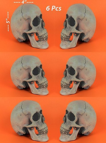 Halloween Spooky Human Skulls, 6 Pcs, Great Halloween Party Favor, For Best Halloween Decoration, By 4E's Novelty,