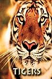 Tigers, Ann Levy, 1493627945