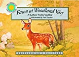 Fawn at Woodland Way, Kathleen Weidner Zoehfeld, 1568990812