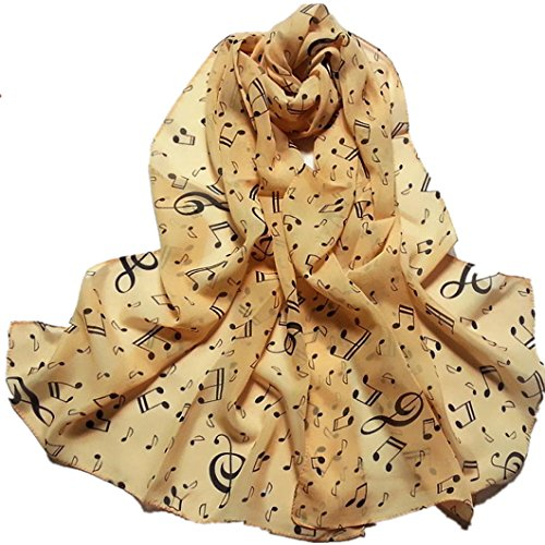 DZT1968%C2%AE Autumn Winter Chiffon Pashmina