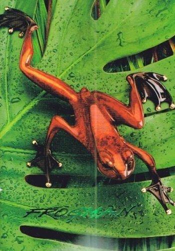 Frogman The Art of Tim Cotterill