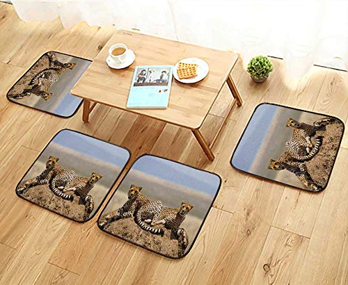 Jiahonghome Anti-Skid Chair Cushions Two Cheetahs on The Hill in The Savannah Kenya Tanzania Africa National Park Serengeti Health is Convenient W19.5 x L19.5/4PCS Set
