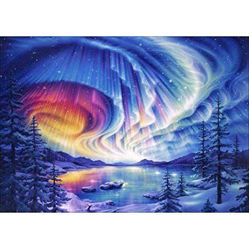 Btbtoc 5D DIY Crystals Diamond Rhinestone Painting Paint by Number Kits Peacock Arctic Aurora,16X12inch