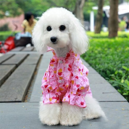 - Eternal Love Puffy Flared Shirt for Dog Fashion & Apparel Pet Clothing SIZE 8-Color Blue