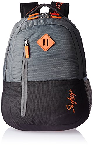 Skybags Leo 26 Ltrs Grey Casual Backpack (BPLEO3GRY)
