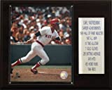 MLB Carl Yastrzemski Boston Red Sox Career Stat Plaque