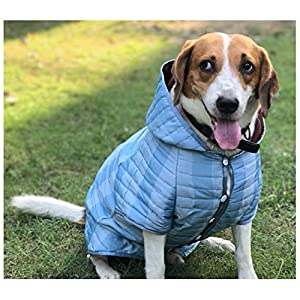 Wagging Fashion Hoodie For Dogs (1)Blue