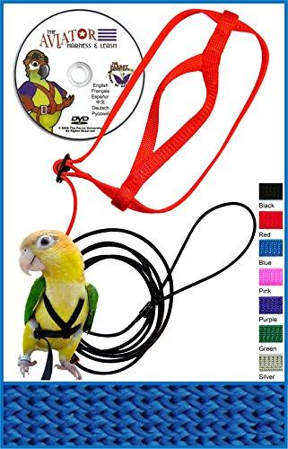 The AVIATOR Pet Bird Harness and Leash: Petite Blue by The AVIATOR