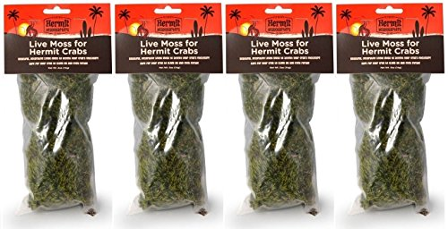 (4 Pack) Flukers Live Moss for Hermit Crabs, 0.5-Ounce Each ()