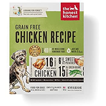 Honest Kitchen The Human Grade Dehydrated Grain Free Chicken Dog Food, 10  Lb   Force