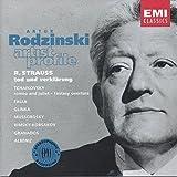 Artur Rodzinski: Artist Profile