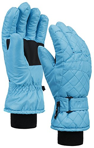 Lined Quilted Gloves (ANDORRA Premium Women's Waterproof Quilted Thinsulate Insulating Snow)
