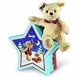 Clara Teddy Bear in Star Box