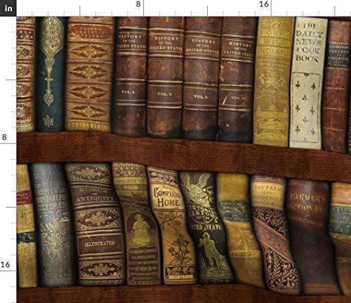 Spoonflower Book Fabric - Books Library Shelves Bookcase Literary Fancypantaloons by Peacoquettedesigns Printed on Modern Jersey Fabric by The Yard