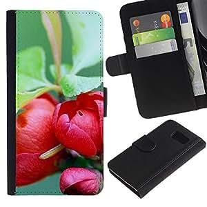 Paccase / Billetera de Cuero Caso del tirón Titular de la tarjeta Carcasa Funda para - Plant Nature Forrest Flower 73 - Samsung Galaxy S6 SM-G920