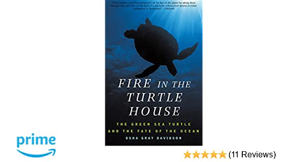 Fire In The Turtle House: The Green Sea Turtle and the Fate