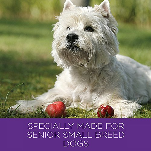 Wellness Complete Health Natural Dry Small Breed Senior