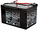 Yamaha RDS250, RDS300 Sea Scooter Battery