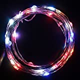 5m/16.5ft 50 Waterproof Led's on a Flexible Silver Copper Wire for Christmas, Outdoor, Patio, Garden, Party Decoration with Dc12v 1a Adapter (Rgb)