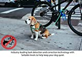 Garmin 010-01548-20 Delta Smart Dog Trainer with