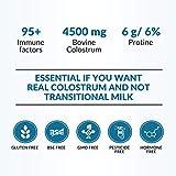 Colostrum Powder - Renegade Colostrum - 100% Pure